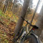 初めての野幌森林公園